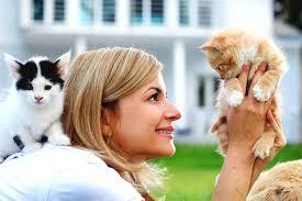 CAT SITTING -subaito-6